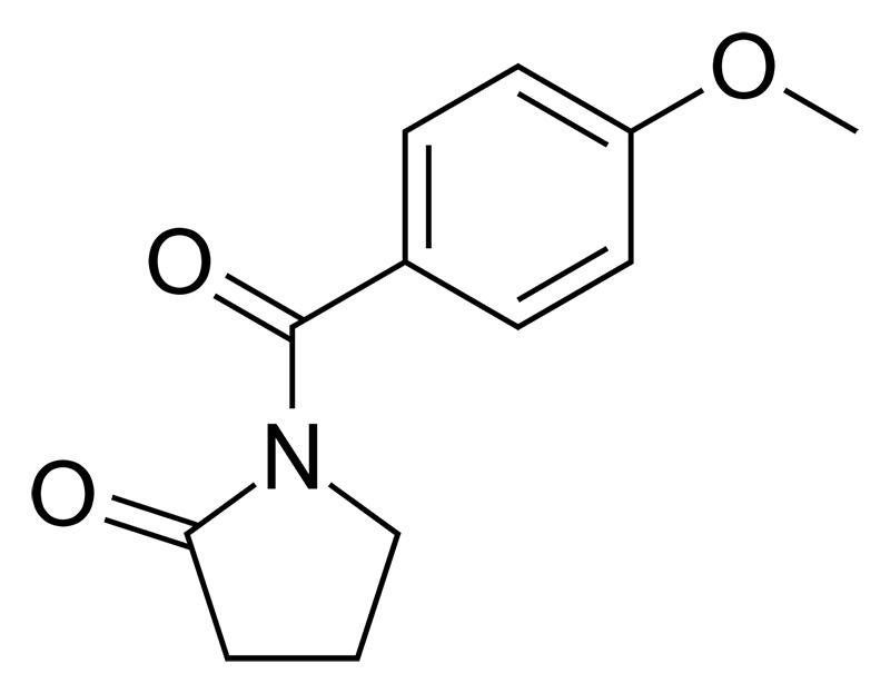 Aniracetam vs Noopept